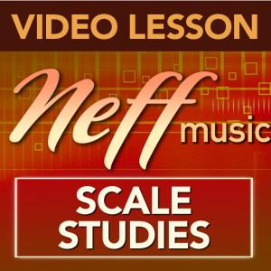 VL-ScaleStudies